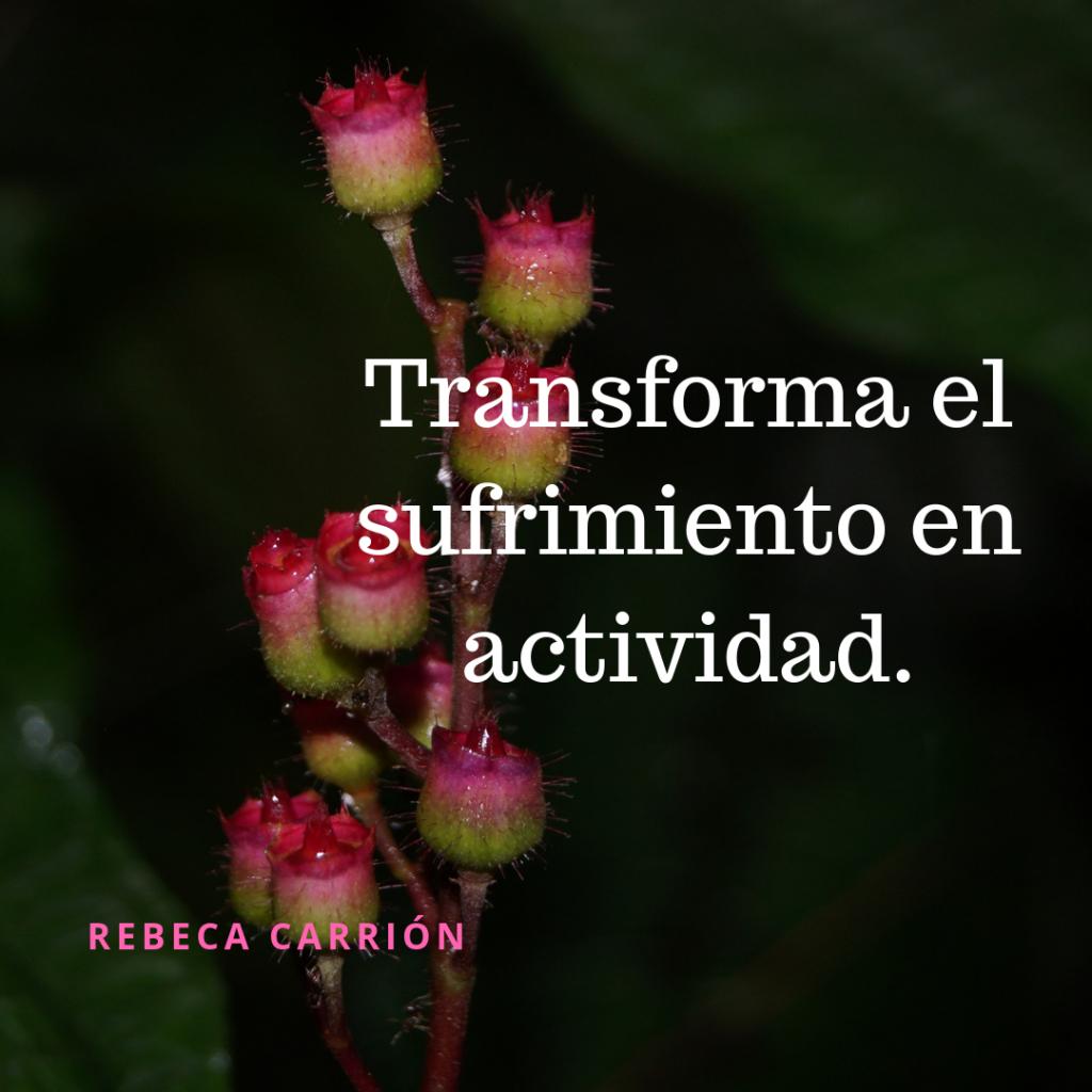 Transforma el sufrimiento en actividad